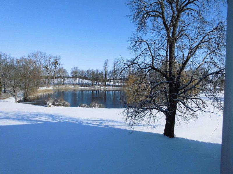 Beispiel: Park im Winter, Foto: Gut Gross Helle.