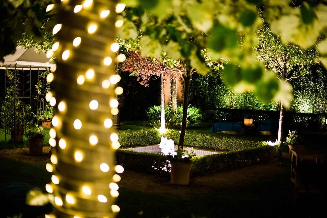 Lucecitas por los jardines