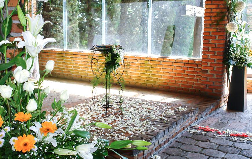 Jardín Cedros - Foto Cedrela