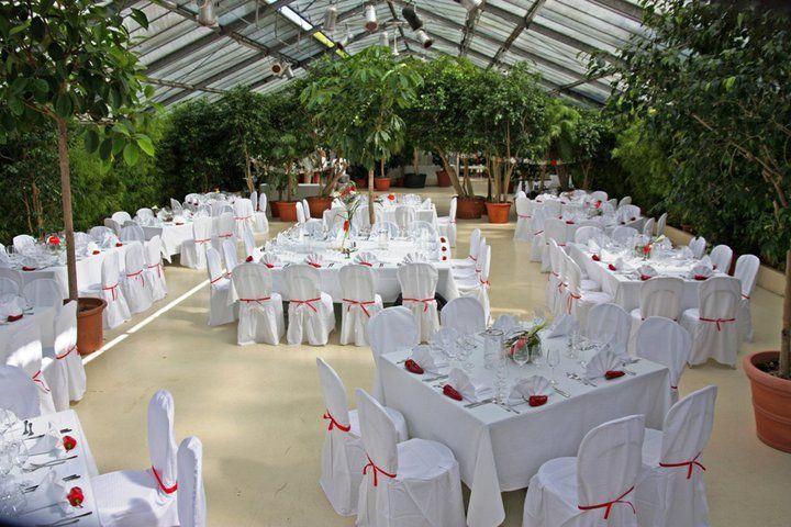 Beispiel: Theaterhaus mit Hochzeitsgedecken, Foto: Botanikum.