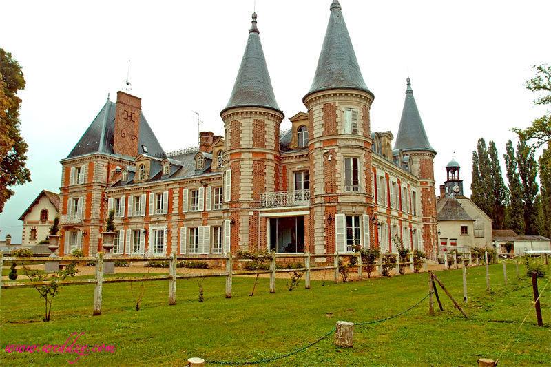 Mariage Weddzy dans un château