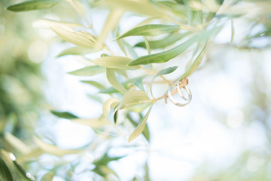 Mariage provençal sous les oliviers