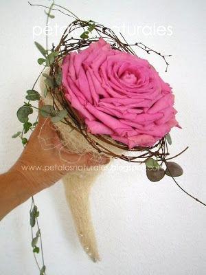 Rosmelia rosa fresca