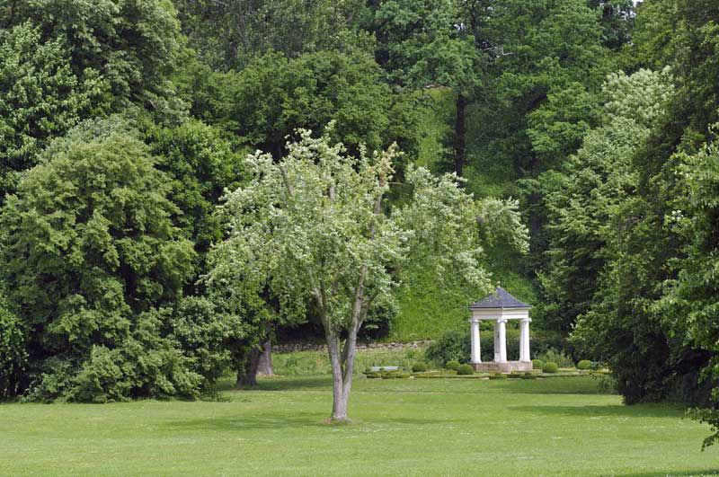 Beispiel: Umgebung, Foto: Gaststätte Alte Remise.