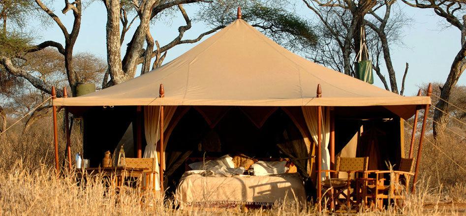 Safari trépidant dans le Tarangire - Nomad Tanzania