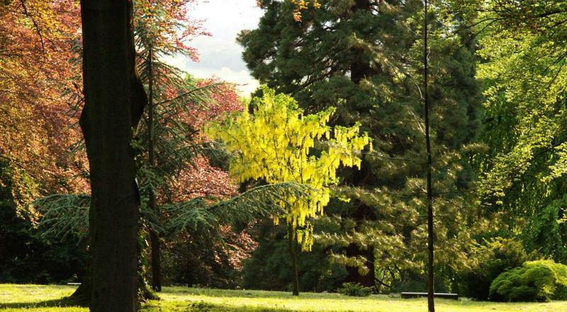 Beispiel: Park, Foto: Goldschmidts Park.