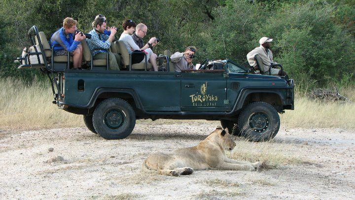 Beispiel: Safari-Erlebnis, Foto: Madiba.de.