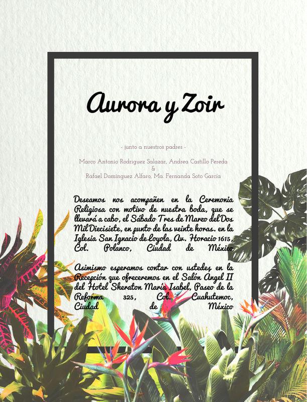 Aurora y Zoir