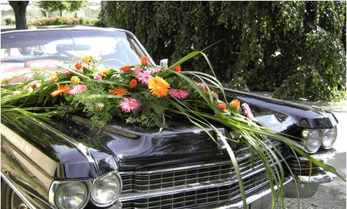 Beispiel: Hochzeitsauto, Foto: Der Sonnenhof.
