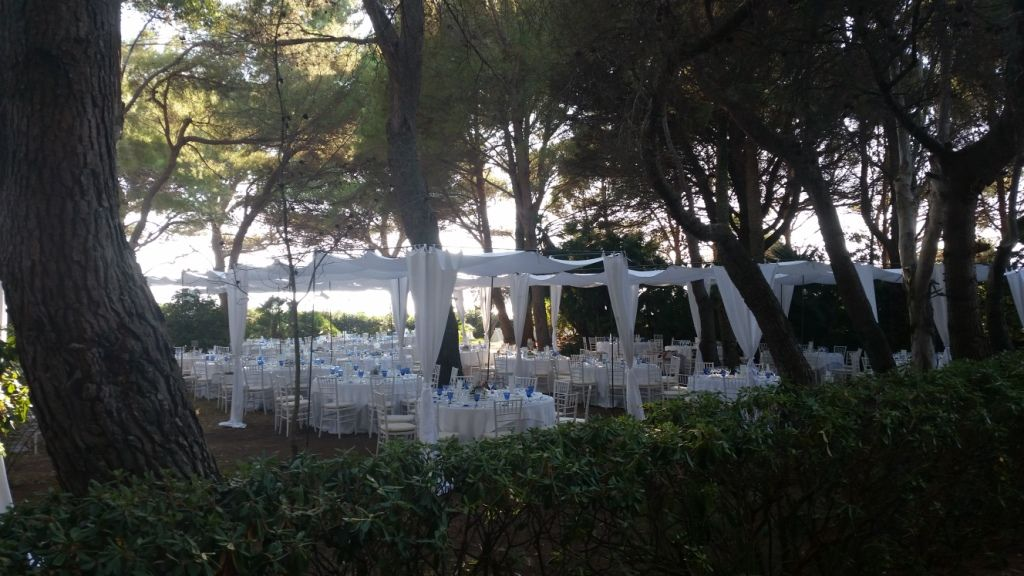 Reception under the Pinetrees