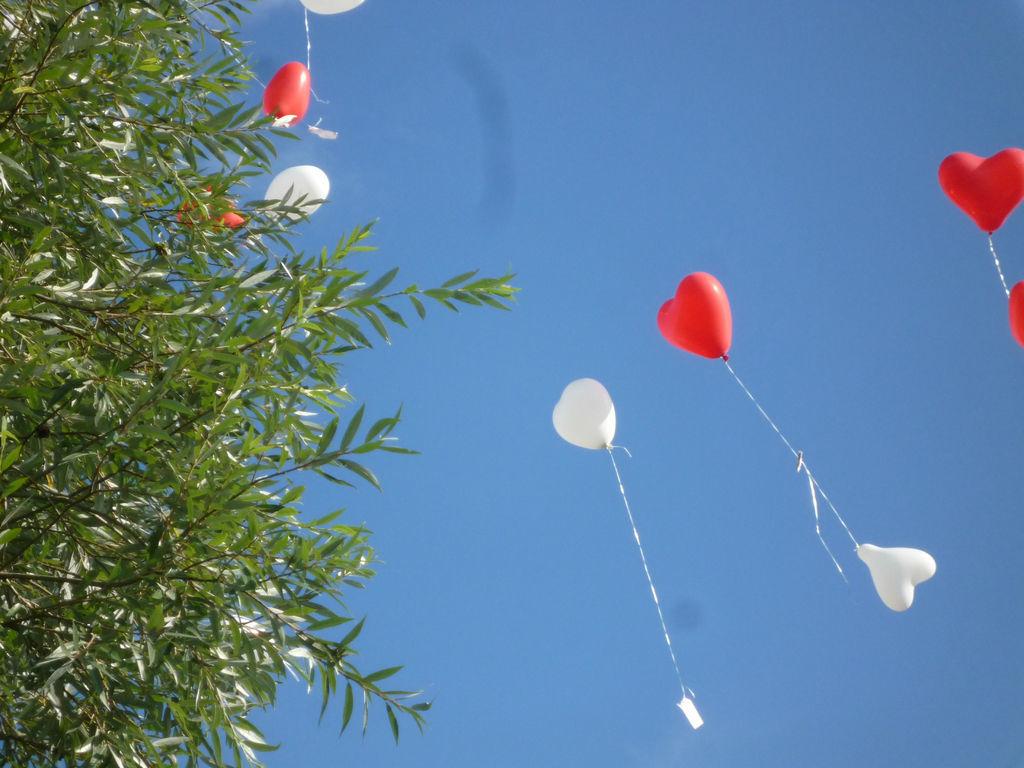 Beispiel: Luftballons, Foto: Sekt am See.