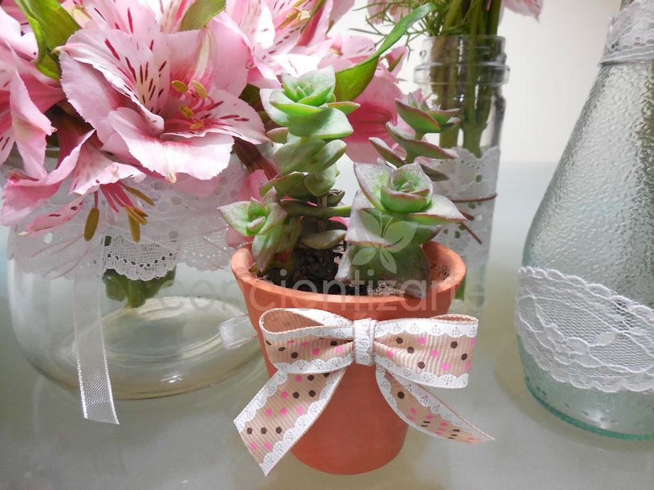 Planta Suculenta en maceta de arcilla decorada con cinta de borlón. Recuerdo de boda, shower.
