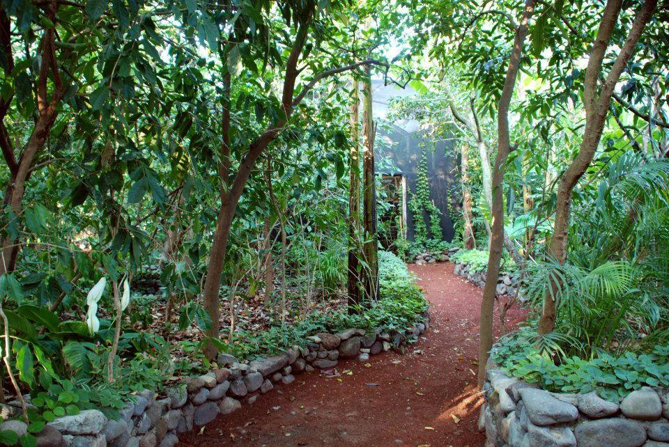Jardín para bodas - Foto La Casa de los Árboles