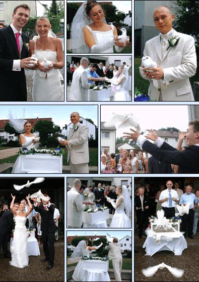 Beispiel: Hochzeitstauben, Foto: Hochzeitstauben RheinMain.