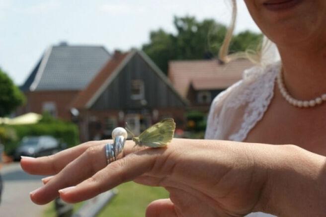 Beispiel: Schmetterlinge für Ihre Hochzeit, Foto: Ihr Hochzeitsschmetterlinge.