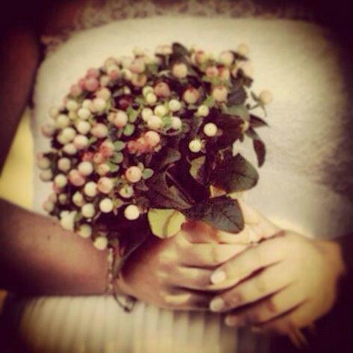 Bouquet de bayas de hiperycum