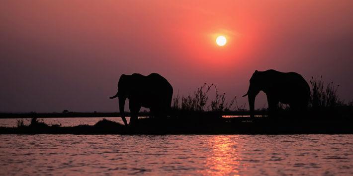 Beispiel: Lassen Sie sich von Afrika verzaubern, Foto: Kuoni.