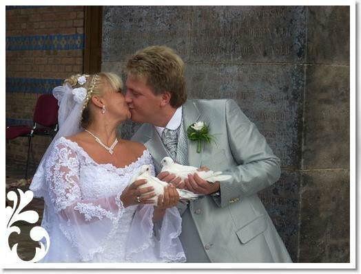 Beispiel: Handtauben, Foto: Losters Weisse Hochzeitstauben.