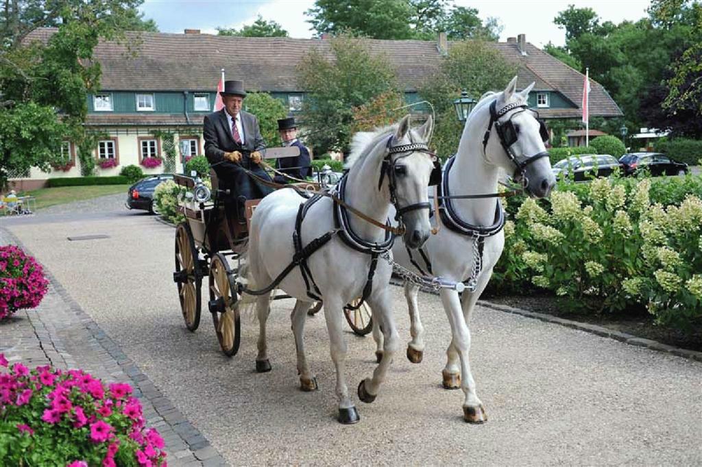 Beispiel: Hochzeitskutsche, Foto: Romantik Hotel Linslerhof.