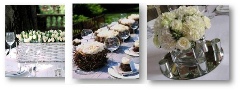 Jardín de té y flores. Tulipanes, nidos y espejo