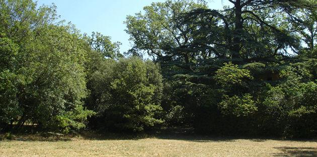 Château de la Prade - Jardin