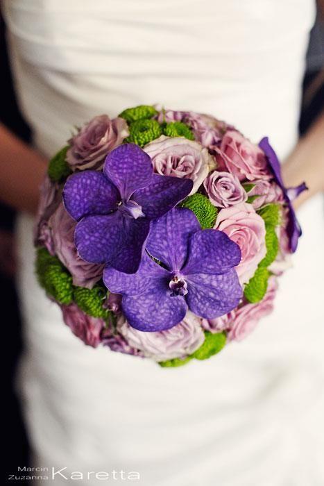 fiolety  z Vandą  #vanda