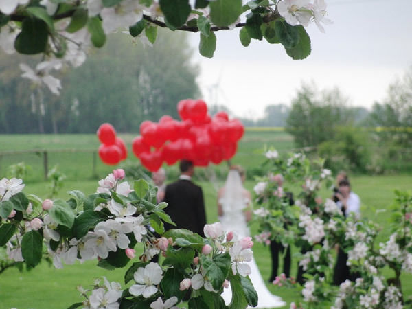 Beispiel: Brautpaar mit Apfelblüte, Foto: Gut Schöneworth.