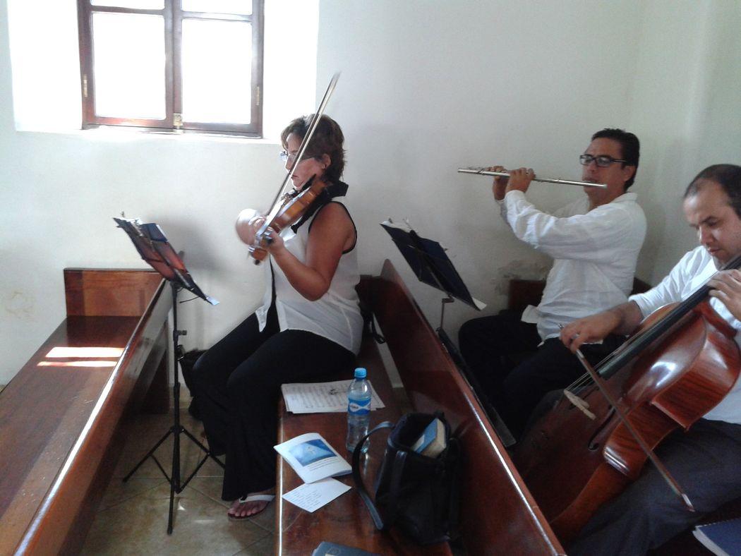 Violín, Flauta, Cello + Voz