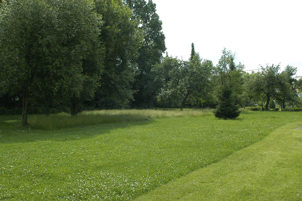 Beispiel: Umgebung, Foto: Landgasthof Weisser Löwe.