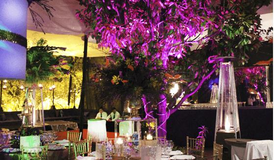 Luz y sonido para bodas en Zapopan, Jalisco - Foto de LarAudio