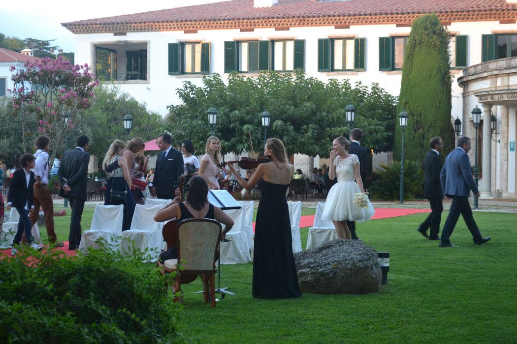 Aperitivo de boda en los jardines del Hostal La Gavina de S'Agaró (Girona)