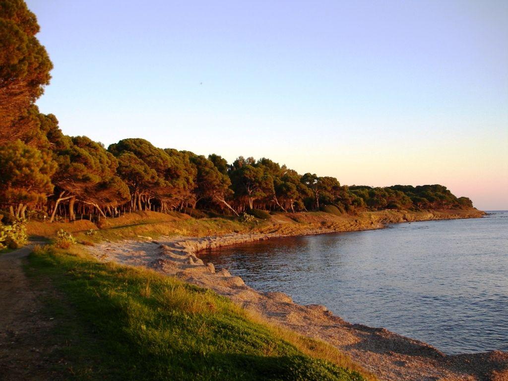 Coastline Punta Licosa