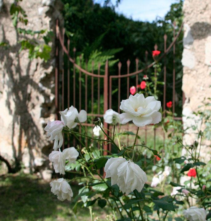 Villa Giusso