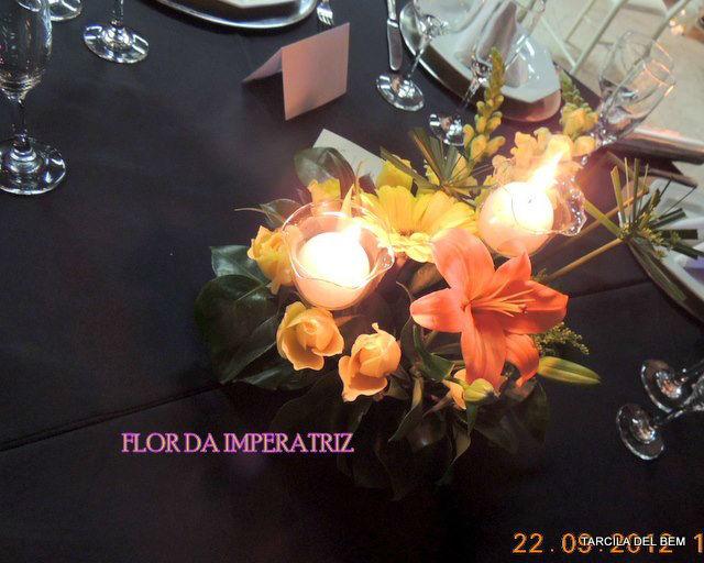 Flor da Imperatriz. Foto: Tarcila Del Bem