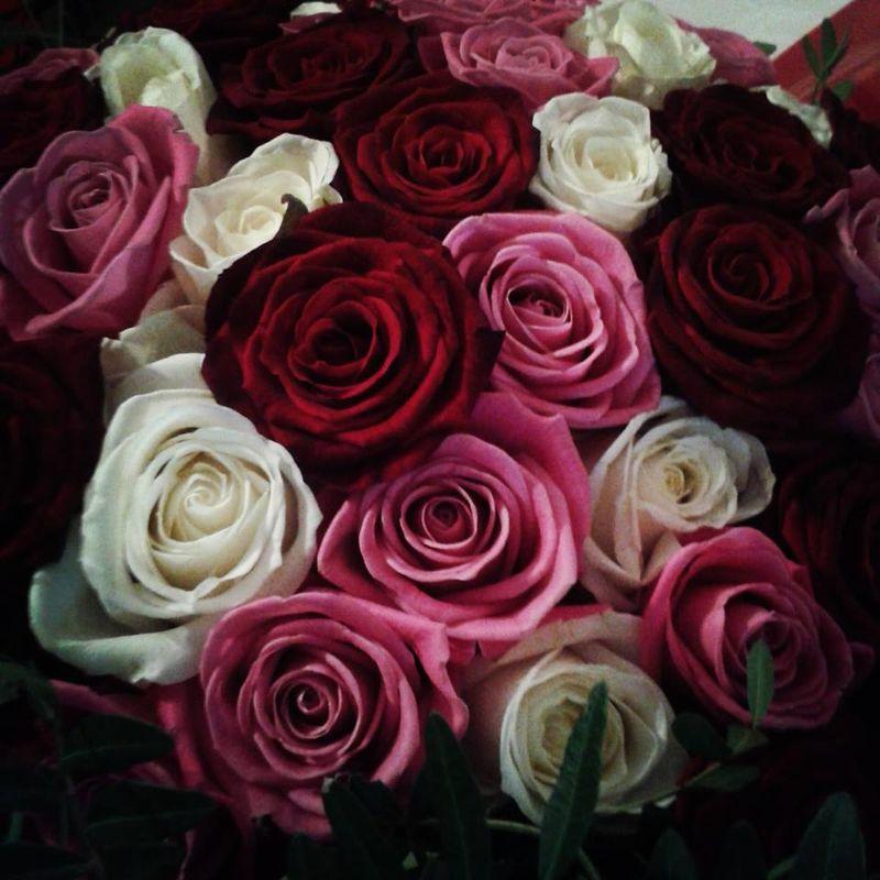 Camaïeu de roses/Estelle Leclerc