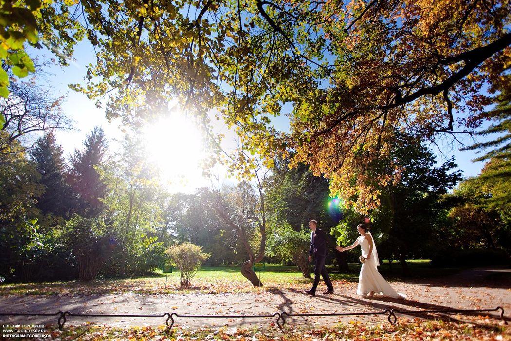 Осень прекрасное время года.