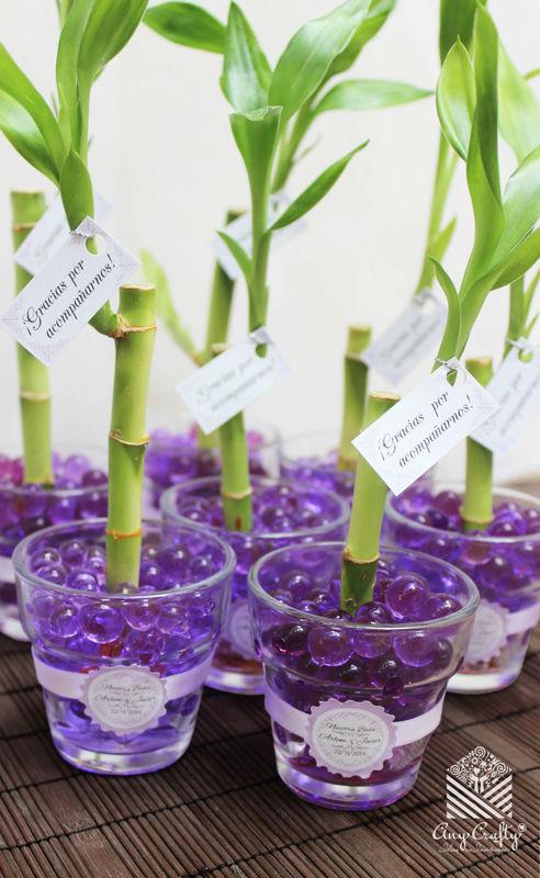 Bamboos personalizados con macetero de vidrio