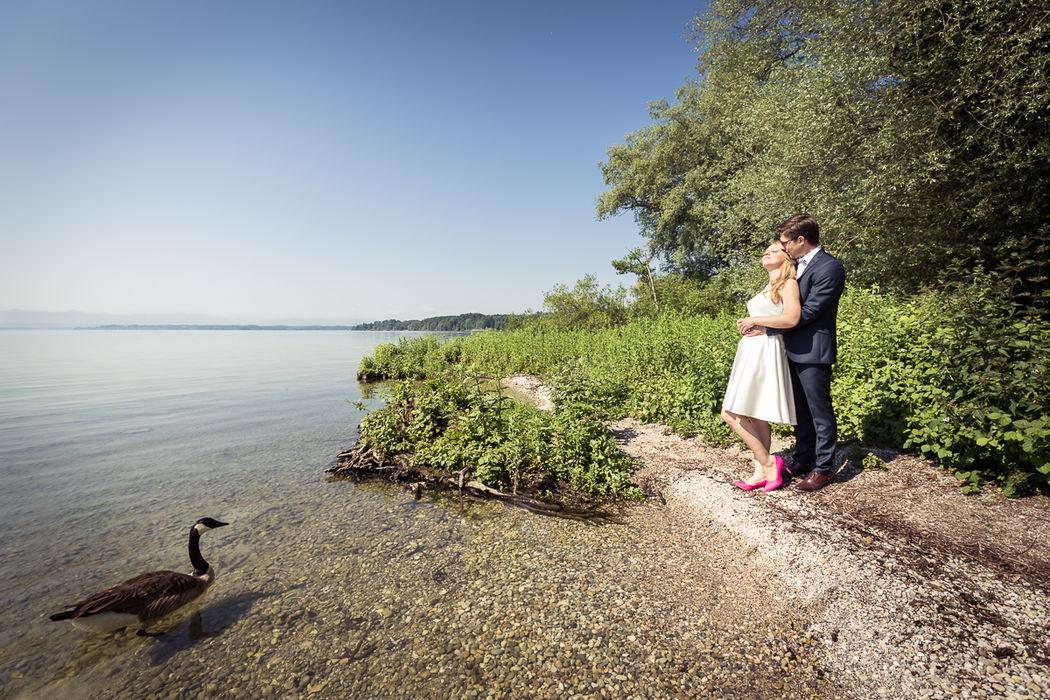 Roseninsel, Starnberger See