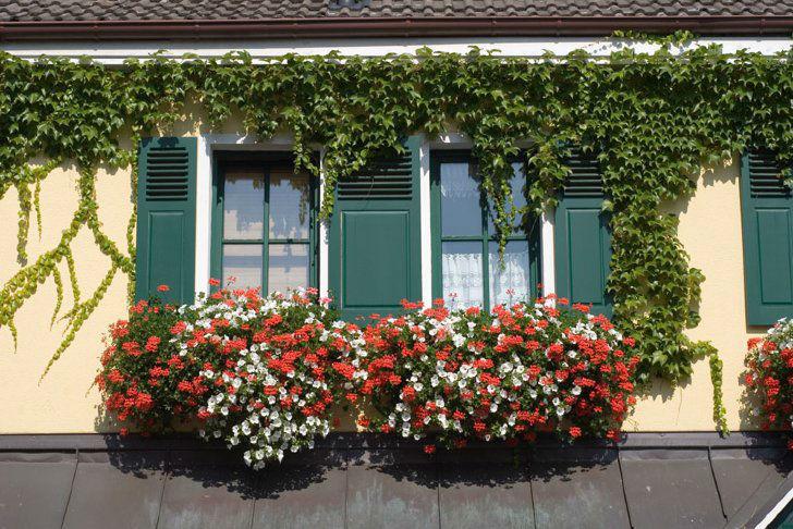 Beispiel: Außenansicht, Foto: Landhaus Alte Scheune.