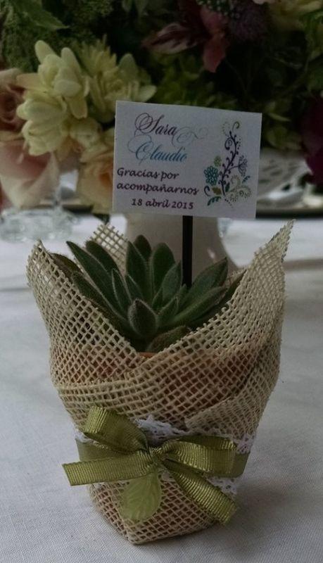 Recuerdo de bodas con suculentas decoradas con yute, blondas, cinta verde y aplique de metal. Recuerdo de boda, shower.