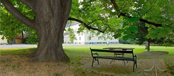 Beispiel: Weitläufiger Park, Foto: Schloss Urschendorf.
