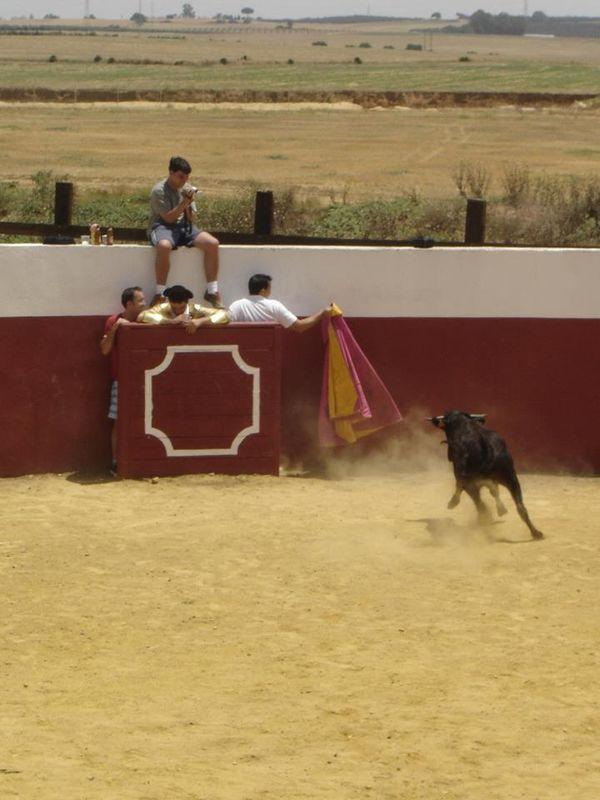 Capeas en Sevilla