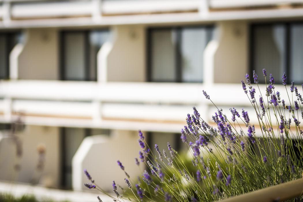 Grand Hotel Pianeta Maratea - le camere vista mare   - photo: http://www.ndphoto.it/