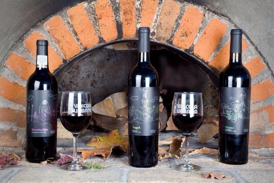Vinícola Urbana, vinos de la gama alta.