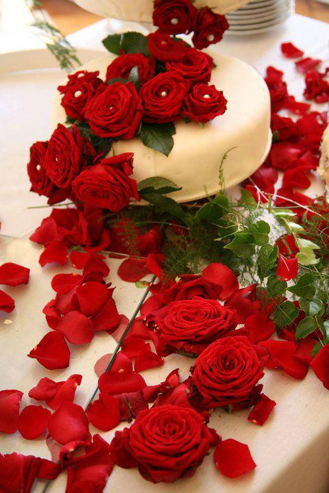 Beispiel: Hochzeitstorte dekoriert mit roten Rosen, Foto: Butterfly Dreams.