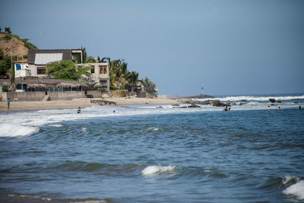 Las Palmeras de Punta Sal