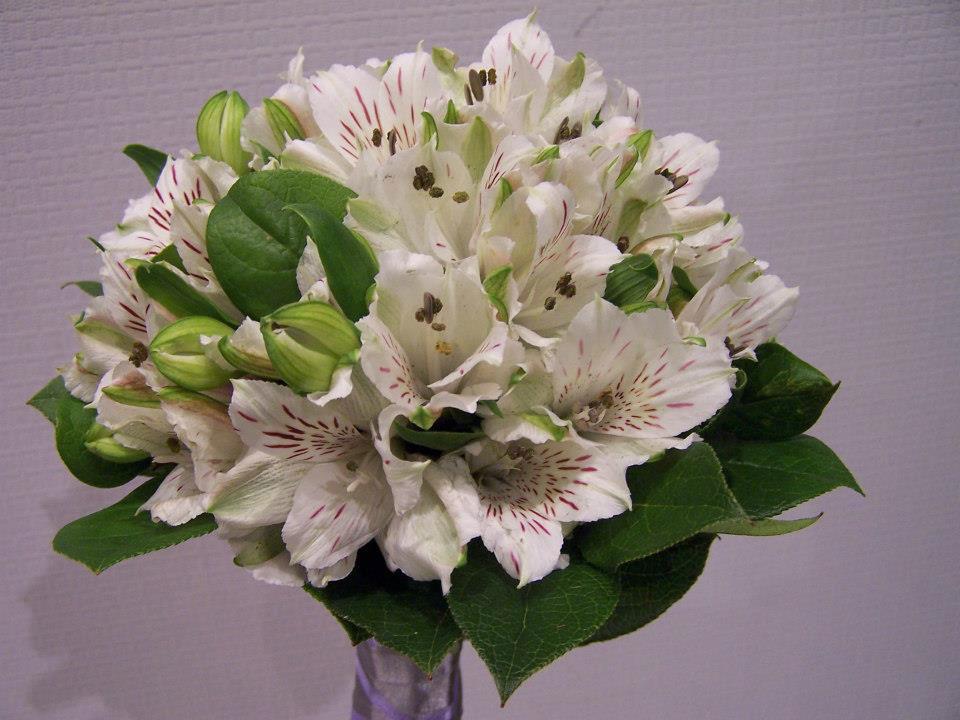 Ramo de novia blanco y verde