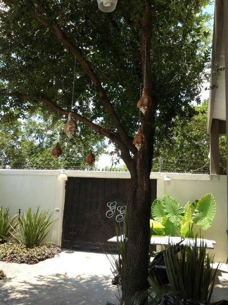 Espectaculares vistas y espacios verdes para tu boda - Foto Quinta Don José