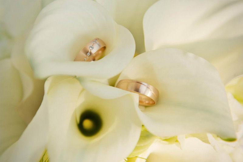Hochzeitsringe | Foto: Romeo fragt Julia