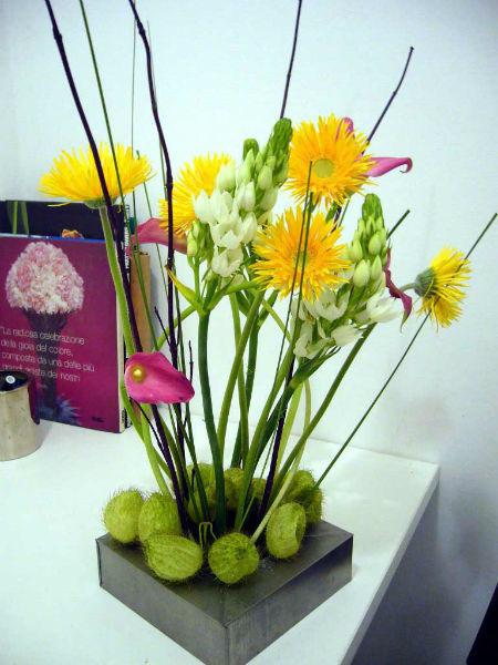 Diseños florales Herbs